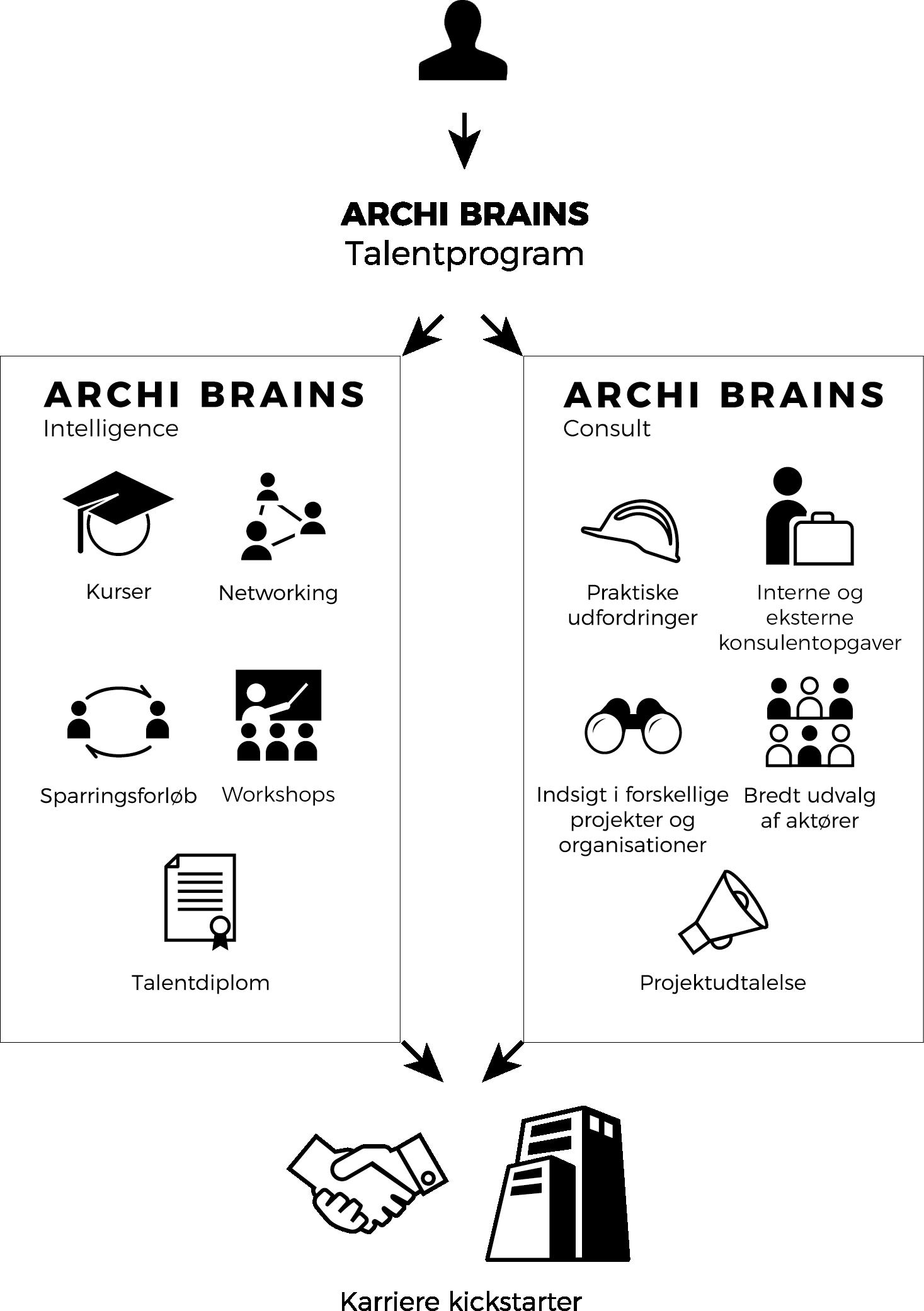 archi brains
